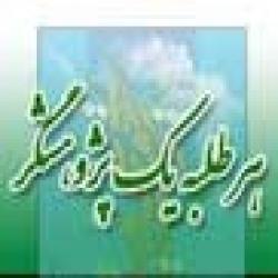 لرستان گزارش هفته پژوهش مدرسه علمیه فاطمه الزهراء سلام الله علیها  شهرستان کوهدشت